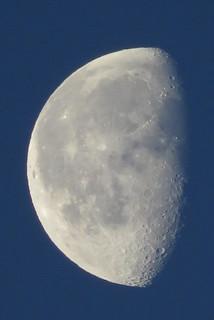 Morning Moon!