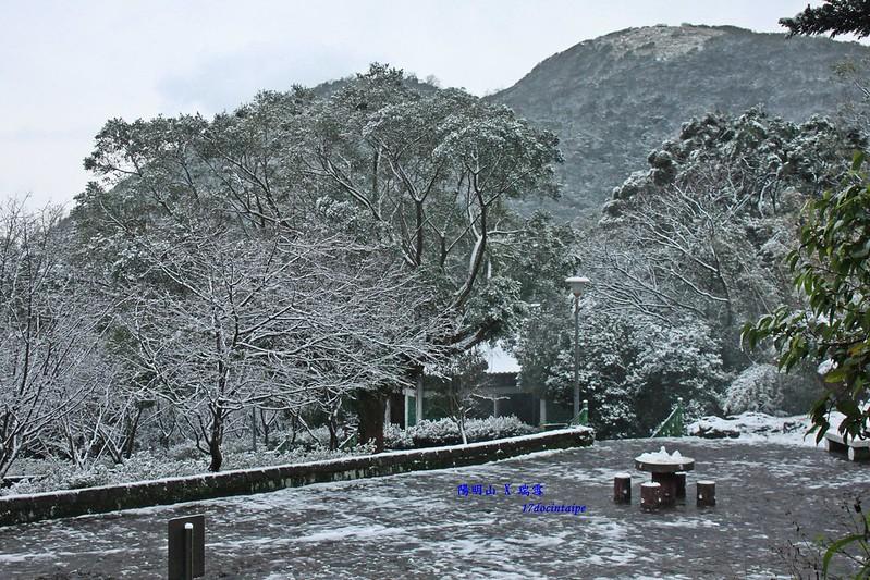 2016-台北陽明山-瑞雪-難得一見的雪白山景-17度C隨拍 (115)