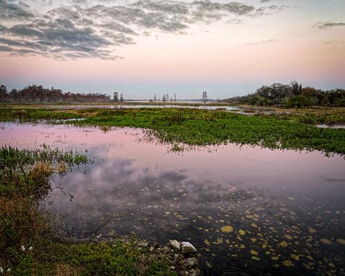 sky panorama usa cloud reflection water landscape dawn florida cloudy calm swamp marsh lakeland centralflorida circlebbarreserve ©edrosack