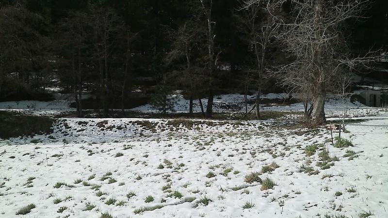Leoni Meadows 1