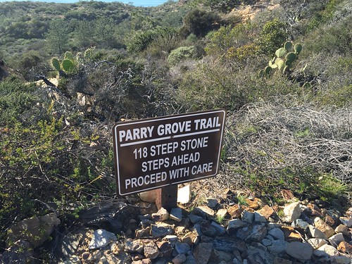 torrey pines state park reserve