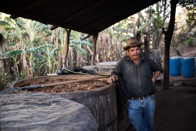 Don Alberto Martinez Organic Mezcal Producer