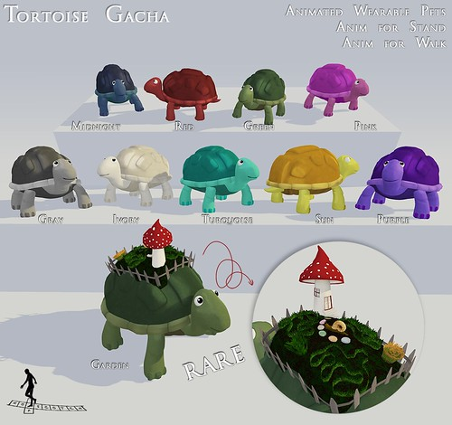 Tortoise Gacha