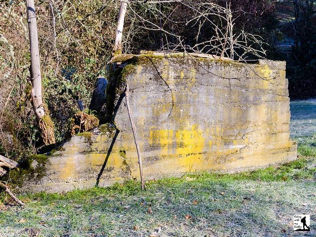 Coal Creek Trail
