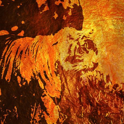 Tiger digital collage