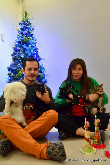 family portrait with cats 05