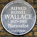 Small photo of ALFRED RUSSEL WALLACE 1823-1913 Naturalist lived here
