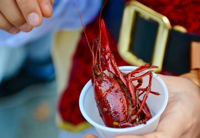 asian american la hot duck crawfish