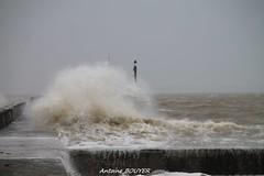 tempête 2014