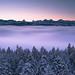 Dawn - Chuderhüsi by Sinar84 - www.captures.ch