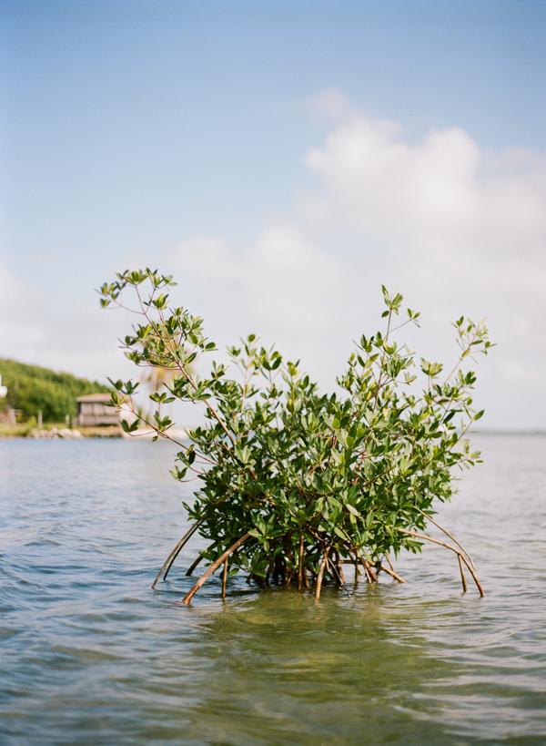 RYALE_Florida_Keys-07