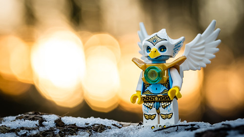 wood winter light sunset snow animal forest toy lego eagle bokeh outdoor minifig tribe eris minifigure chima