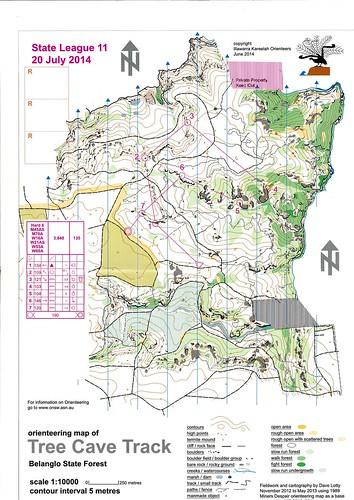 140720 SL Tree Cave Track - Belanglo SF