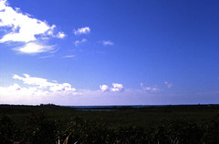 Bahamas 1989 (439) Great Abaco