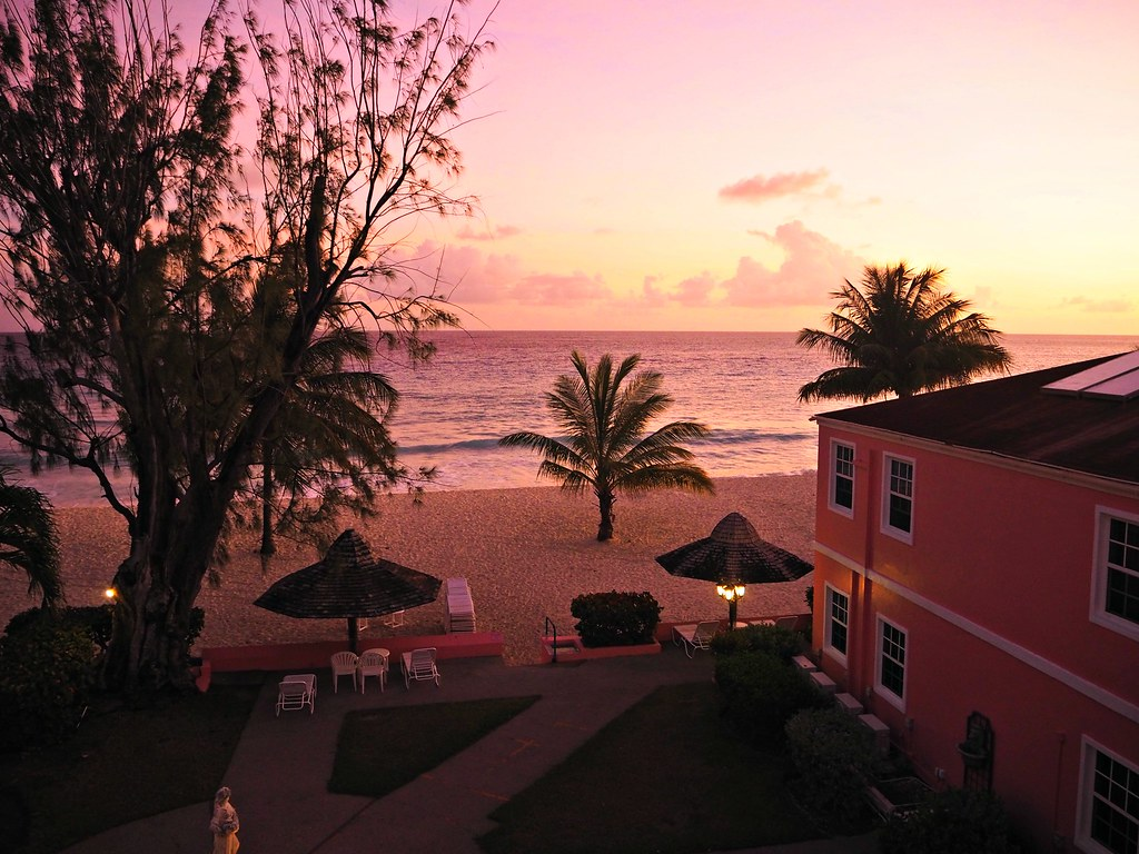 The Little Magpie Southern Palms Barbados Review 32