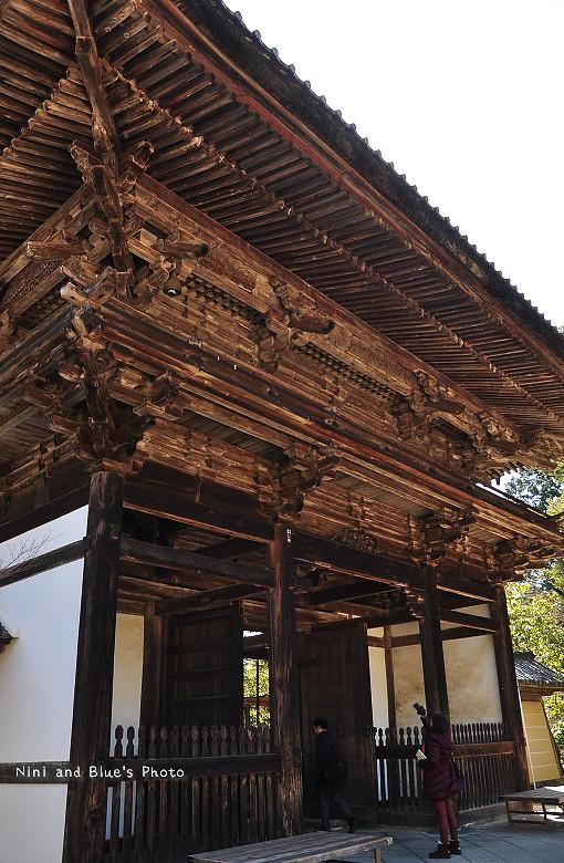 日本京都高雄三尾神護寺高雄茶屋14