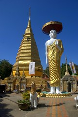 Standing Buddha with pagoda in background