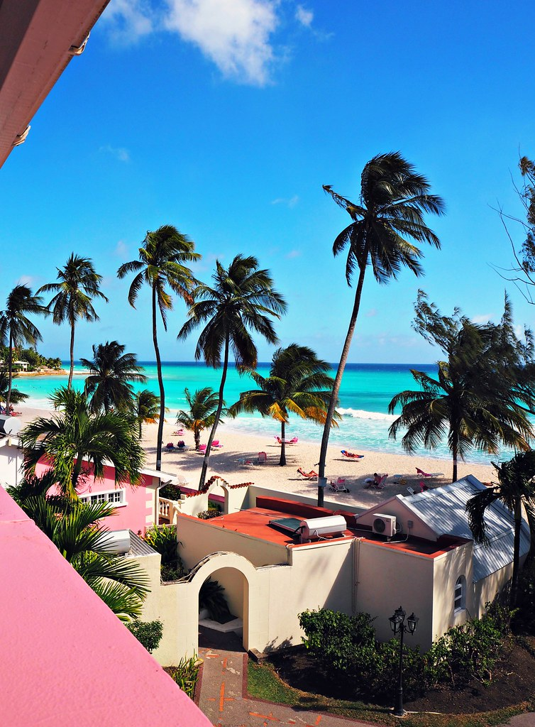 The Little Magpie Southern Palms Barbados Review 15