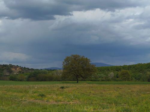 σύννεφα καταιγίδα δέντρο κάμποσ γρεβενά πεδιάδα ανθοχώρι πραμορίτσα