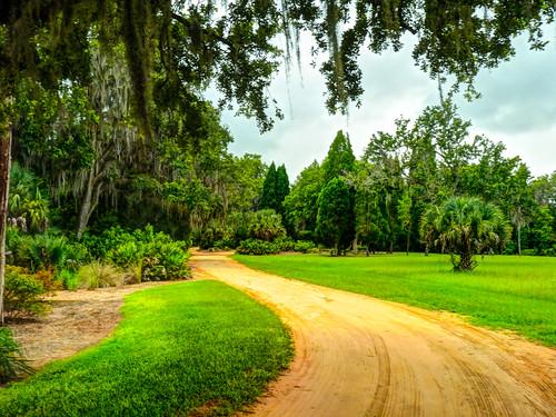 park trees usa america garden unitedstates florida places panasonic lakewales boktowergardens panasonicdmcfz38 dmcfz38 bokmountainlakesanctuaryandsingingtower
