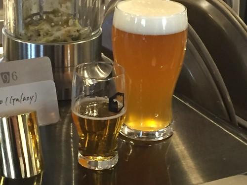 SPRING VALLEY BREWERY 追いホップビール