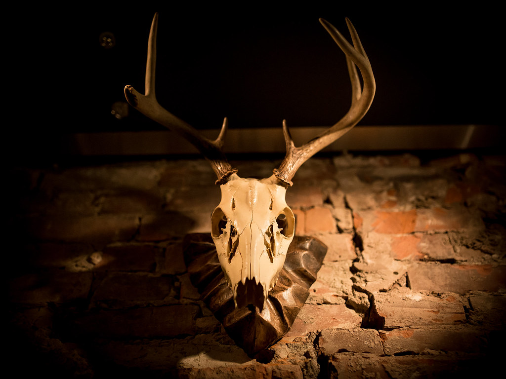 Antler Kitchen & Bar