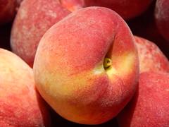 starr-140417-0252-Prunus_persica_var_persica-Florida_Prince_fruit-Hawea_Pl_Olinda-Maui
