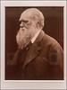 Charles Darwin | Julia Margaret Cameron (1868)