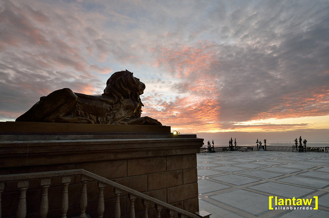 Watcher Lion at Dawn