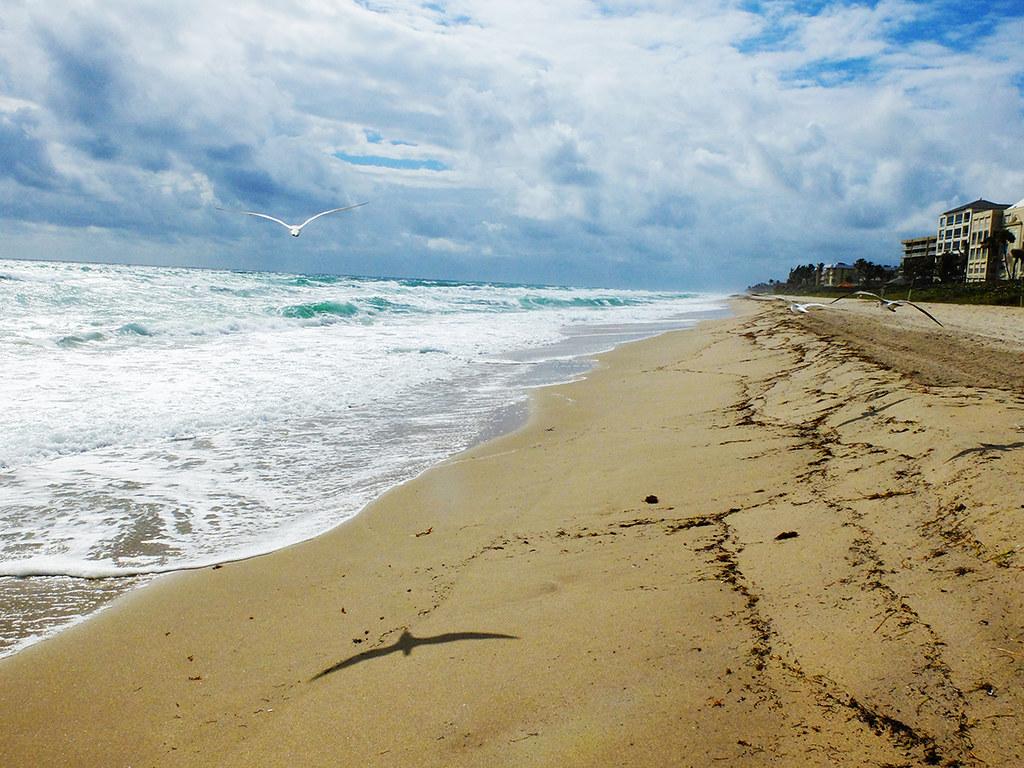 floride-west-palm-beach-(76)