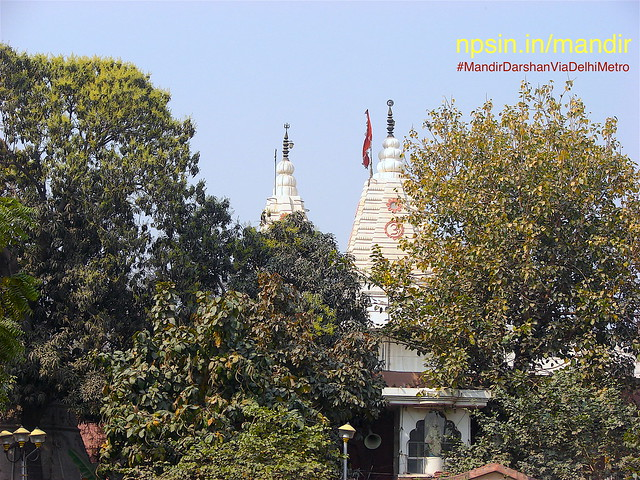 Blossomed mango tree in light green shades increases the beauty of white marbled Shri Hari Temple.