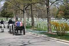 USCG Funeral at Arlington