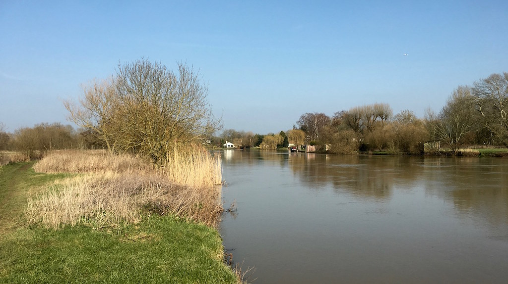 Near Shiplake Reading to Henley walk