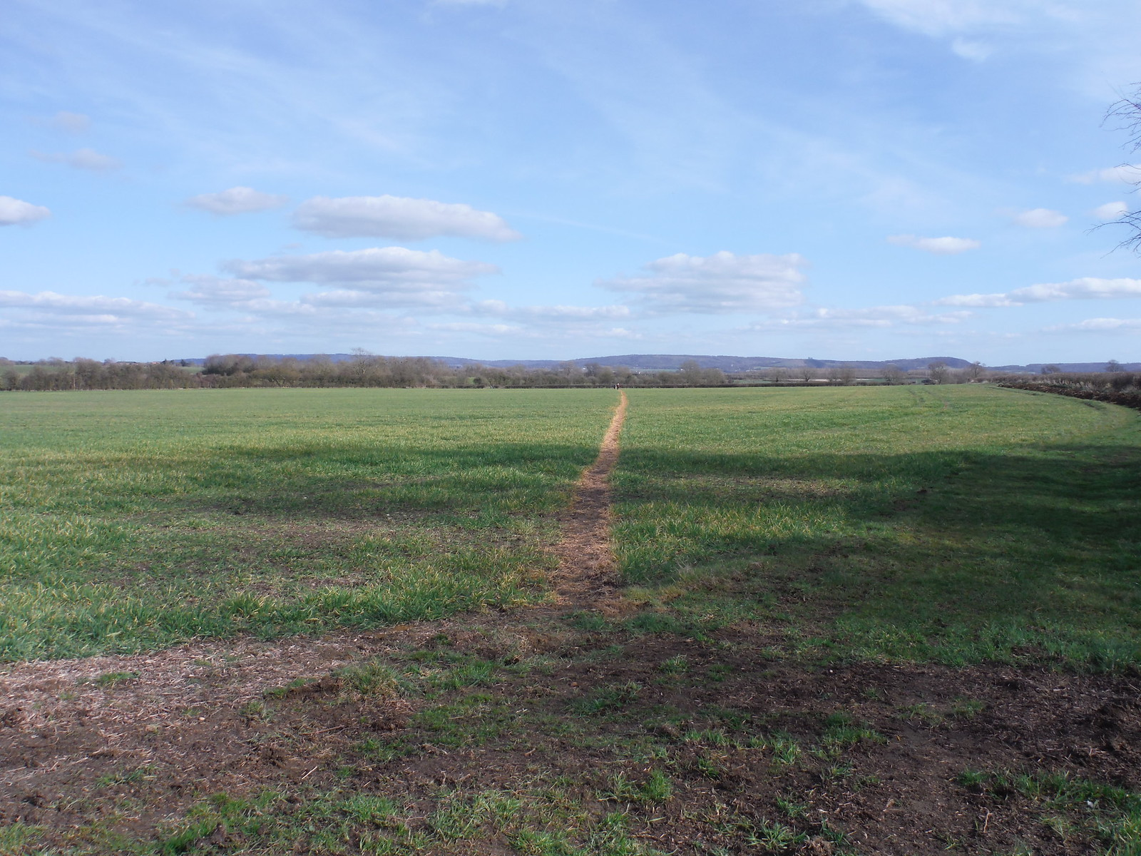 Across massive field towards the Chilterns SWC Walk 193 Haddenham to Aylesbury (via Gibraltar and Ford)
