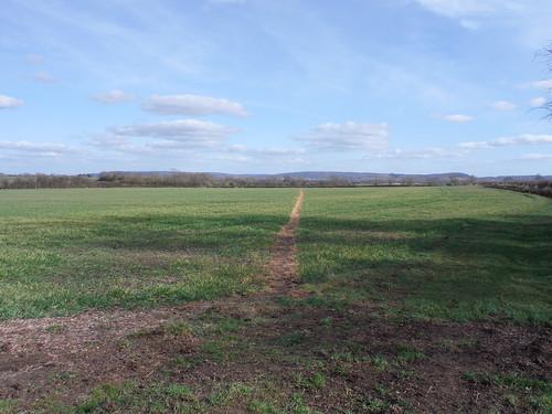 Across massive field towards the Chilterns