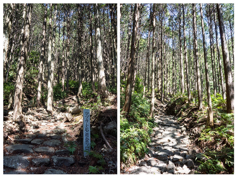 tsuzurato toge stone path