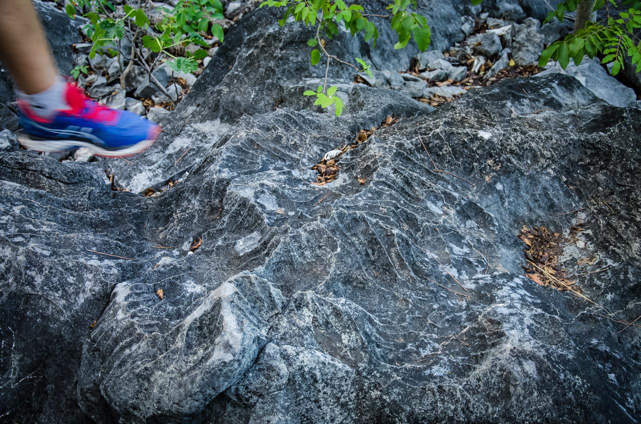 En la cima de una de las elevaciones de Tres Cerros el suelo conformado mayormente por calizas y otras rocas carbonatadas presenta formaciones sinuosas parecidas a lapiaces. (Elton Núñez)