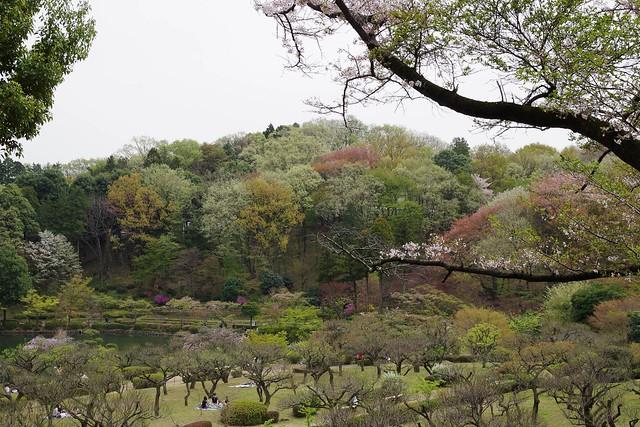 2016/04/10_薬師池公園-8