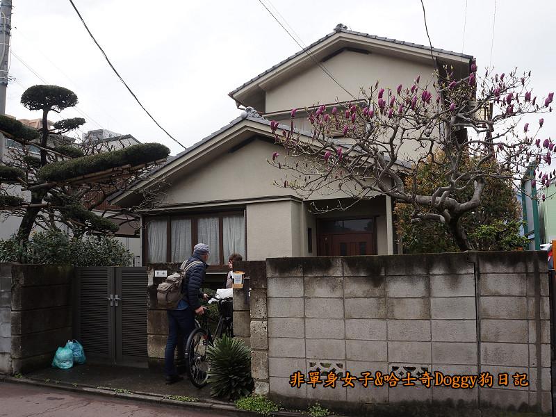 日本東京吉祥寺牛肉丸&satou牛排16