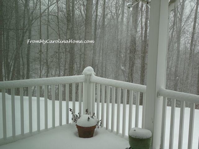 January 2016 Snow 2
