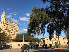 阿拉莫, 聖安東尼奧, 德克薩斯州, 德州, 美國, 美利堅合眾國, The Alamo, Alamo Mission, Mission San Antonio de Valero, San Antonio, Texas, Tejas, United States of America, United States, America, The States, USA, US