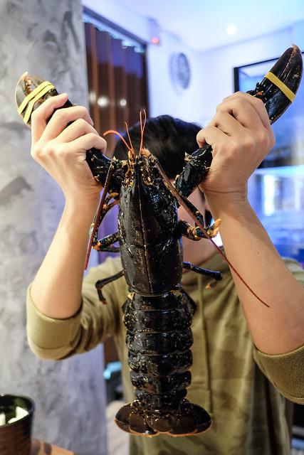 法國布列塔尼藍龍蝦