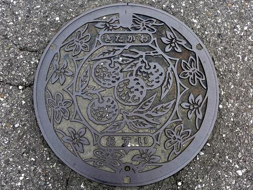 Kitagawa Kochi, manhole cover (高知県北川村のマンホール)