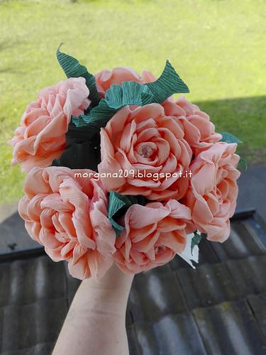 RosefestaDonna_02w