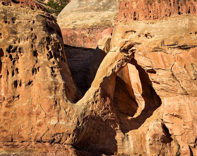Campsite Arch