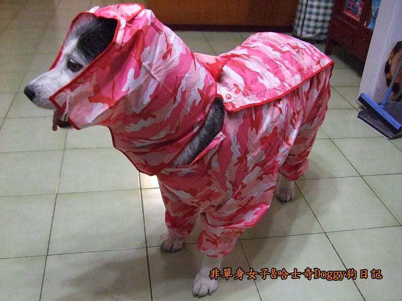 寵物雨衣迷彩服08