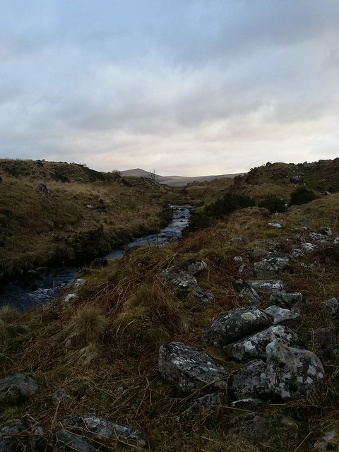 River Taw, Steeperton Tor in the background