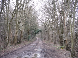 Course of the Wealden Line, SW of Uckfield, near Owlsbury Farm