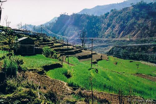 nepal theannapurnas