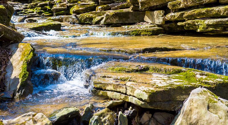 Twin Creek Valley & Henderson Park - March 18, 2016